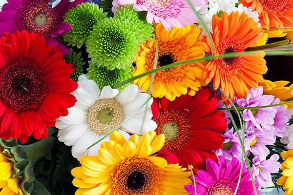 kuss-essentials-Floral