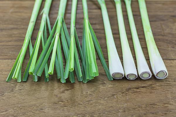 kuss-essentials-Lemongrass