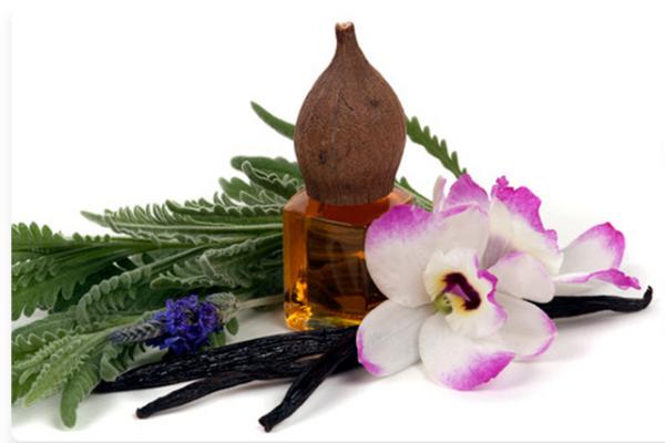 kuss-essentials-Orchid-Vanilla-2